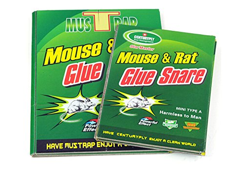 Small Vintage Mice Sticker Traps Board Pads Rodent Mouse
